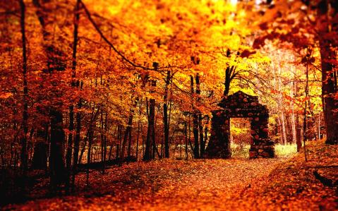 Image: Autumn Season Source: Hot Wallpapers HD