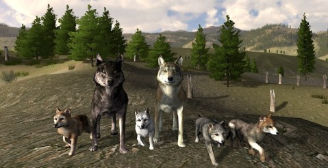 Image Source: Wolf Quest (3D wildlife simulation)